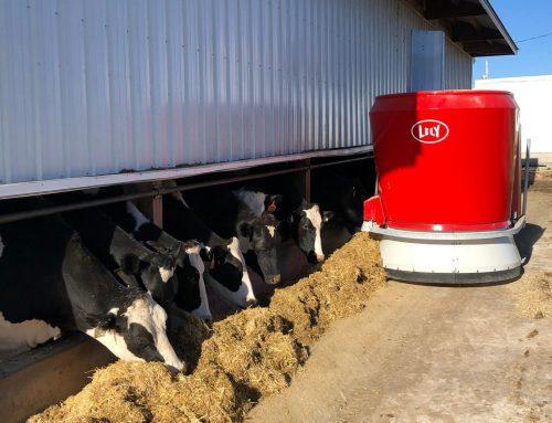 Indagine sulle opinioni degli allevatori di bovini in merito ai sistemi di alimentazione automatica per l'unifeed